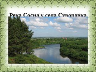 Река Сосна у села Суворовка