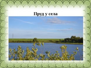 Пруд у села Ищеино,Краснинскийрайон