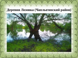 Деревня Лозовка (Чаплыгинскийрайон)