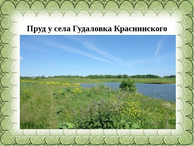 Пруд у села Гудаловка Краснинского района