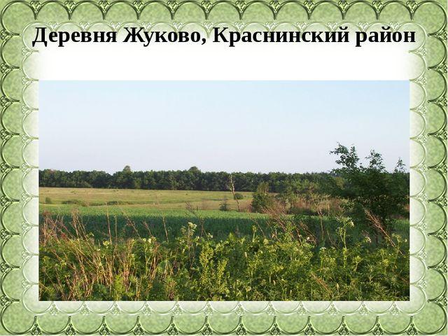 Деревня Жуково, Краснинский район