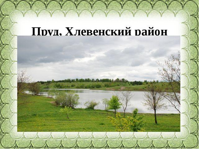 Пруд, Хлевенский район