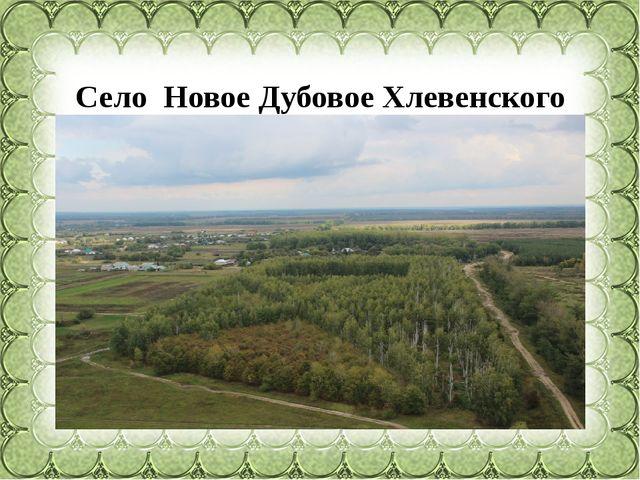 Село Новое Дубовое Хлевенского района