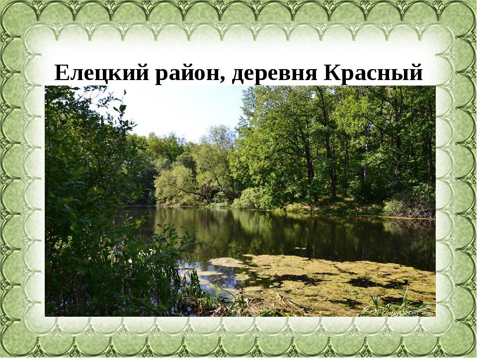 Елецкийрайон, деревня Красный куст