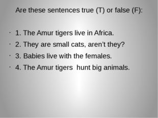 Are these sentences true (T) or false (F): 1. The Amur tigers live in Africa.