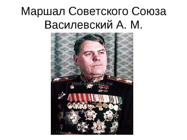 Маршал Советского Союза Василевский А. М.