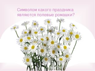 Символом какого праздника являются полевые ромашки?