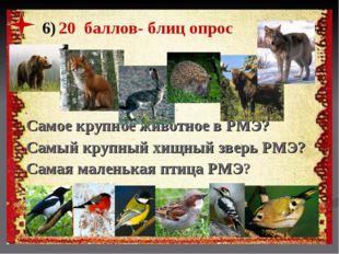 6) 20 баллов- блиц опрос Самое крупное животное в РМЭ? Самый крупный хищный з