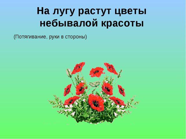 На лугу растут цветы небывалой красоты (Потягивание, руки в стороны)