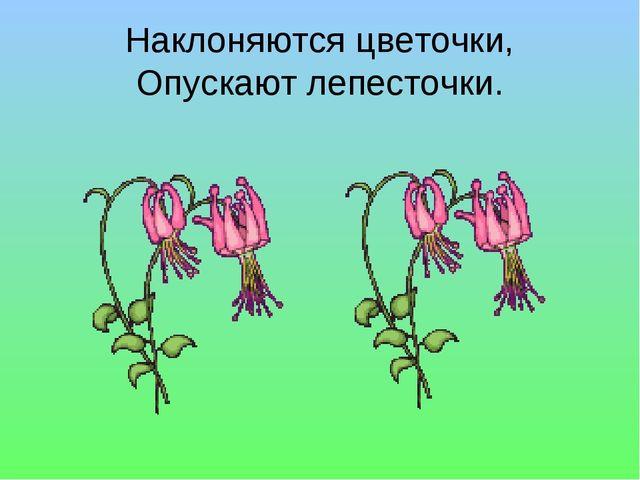 Наклоняются цветочки, Опускают лепесточки.