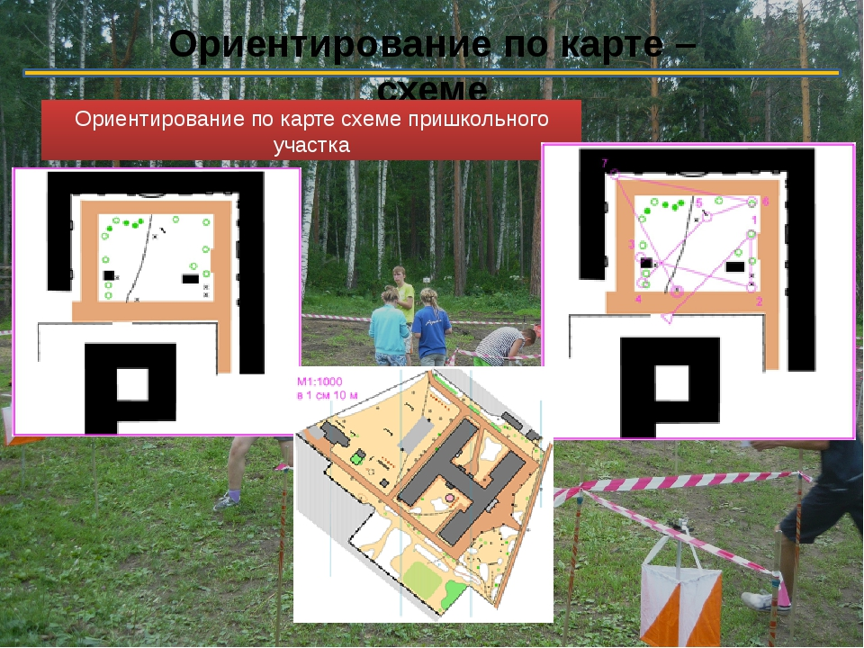 Ориентирование по карте – схеме Ориентирование по карте схеме пришкольного уч...