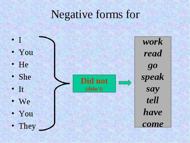 Negative forms for Regular and Irregular I You He She It We You They Did not...