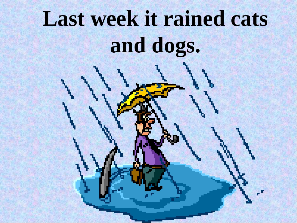 Last week it rained cats and dogs.