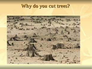 Why do you cut trees?