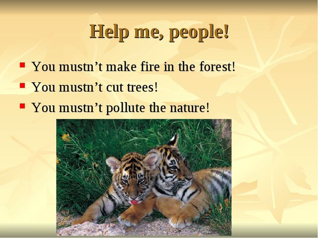 Help me, people! You mustn't make fire in the forest! You mustn't cut trees!...