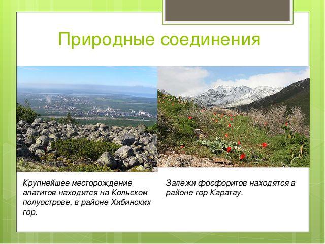 Природные соединения Крупнейшее месторождение апатитов находится на Кольском...