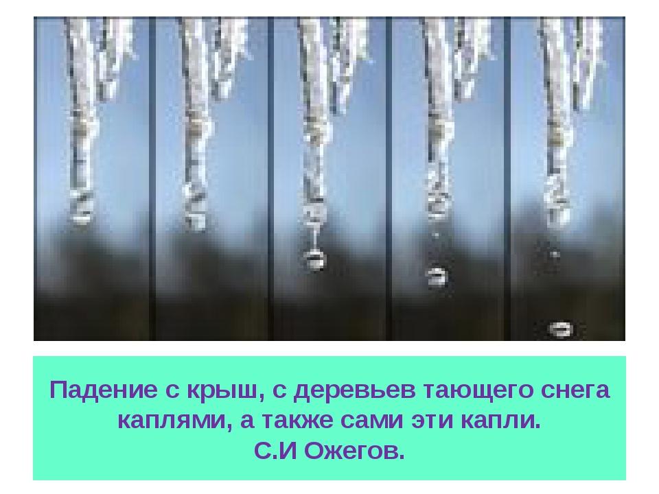 Падение с крыш, с деревьев тающего снега каплями, а также сами эти капли. С.И...