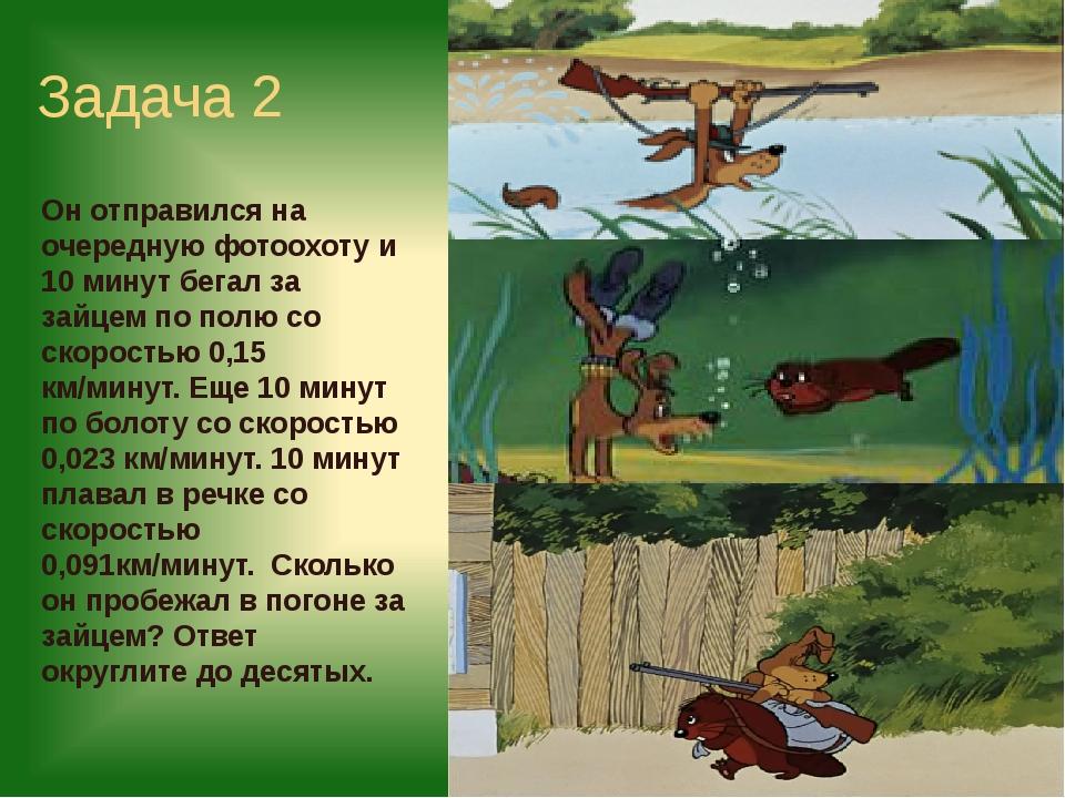 Задача 2 Он отправился на очередную фотоохоту и 10 минут бегал за зайцем по п...