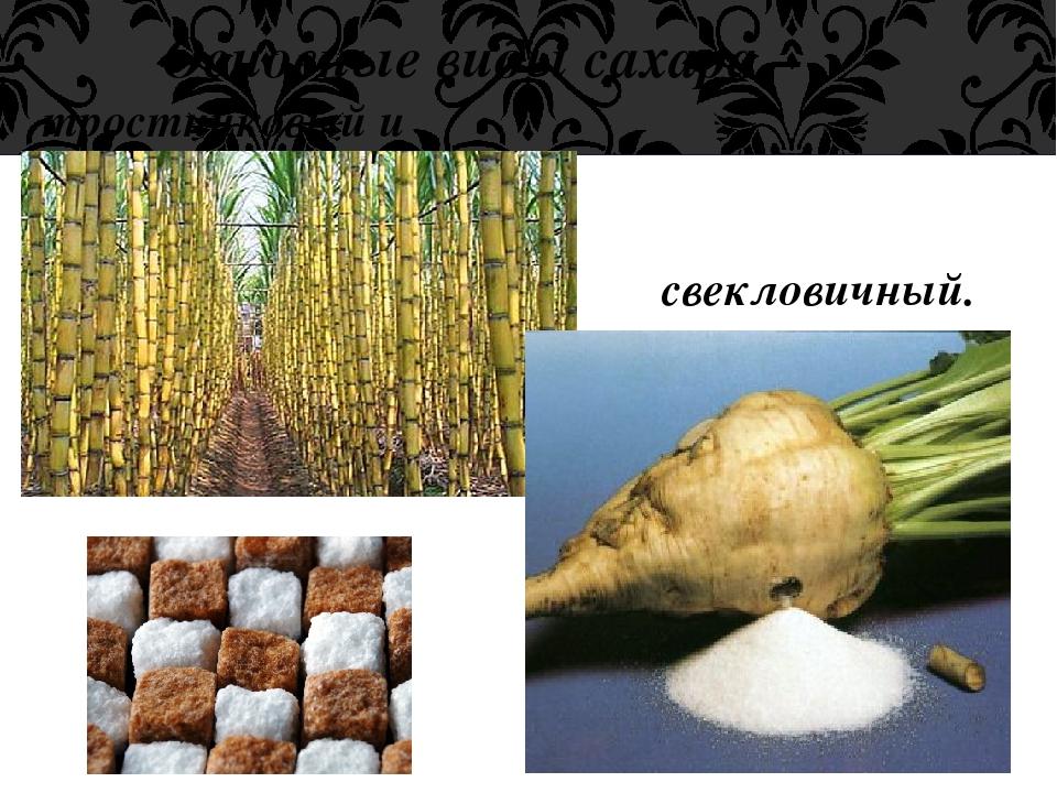 Основные виды сахара – тростниковый и свекловичный.