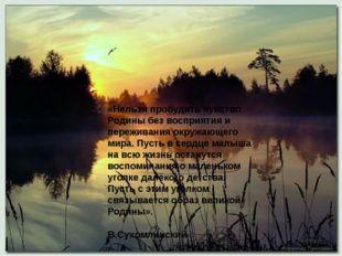 «Нельзя пробудить чувство Родины без восприятия и переживания окружающего ми