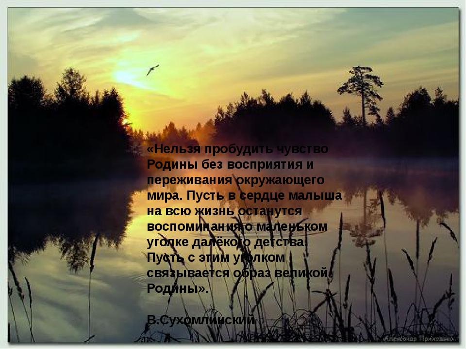 «Нельзя пробудить чувство Родины без восприятия и переживания окружающего ми...