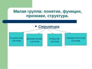 Малая группа: понятие, функции, признаки, структура. Структура Социальная сис