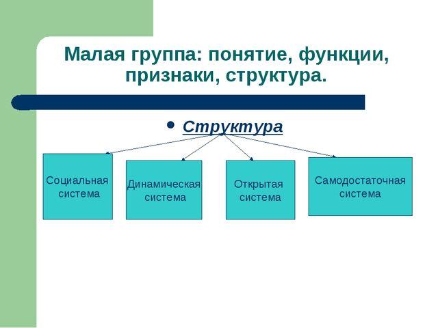 Малая группа: понятие, функции, признаки, структура. Структура Социальная сис...
