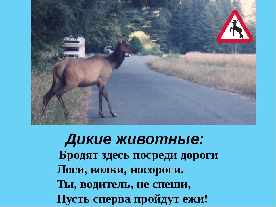Если ты поставил ногу На проезжую дорогу, Обрати вниманье друг Знак дорожный...