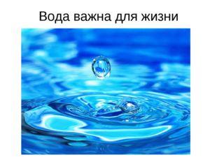 Вода важна для жизни человека