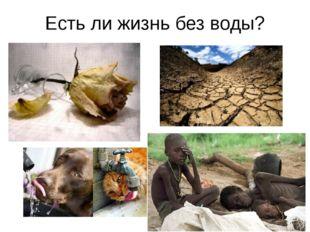 Есть ли жизнь без воды?