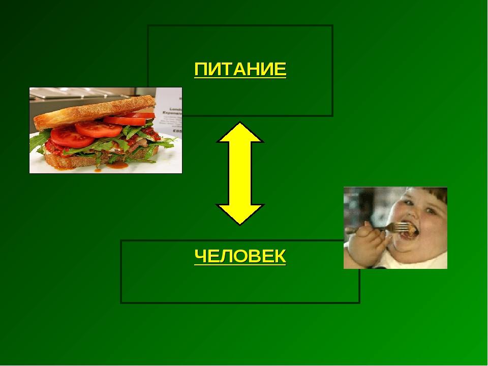 ПИТАНИЕ ЧЕЛОВЕК
