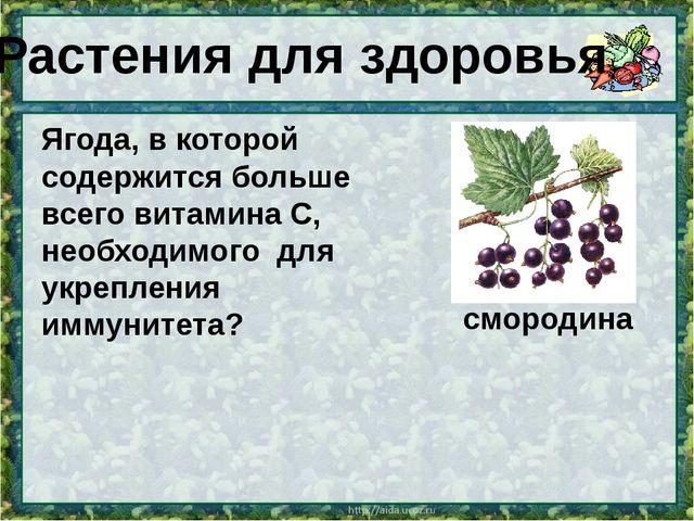 Ягода, в которой содержится больше всего витамина С, необходимого для укрепле...