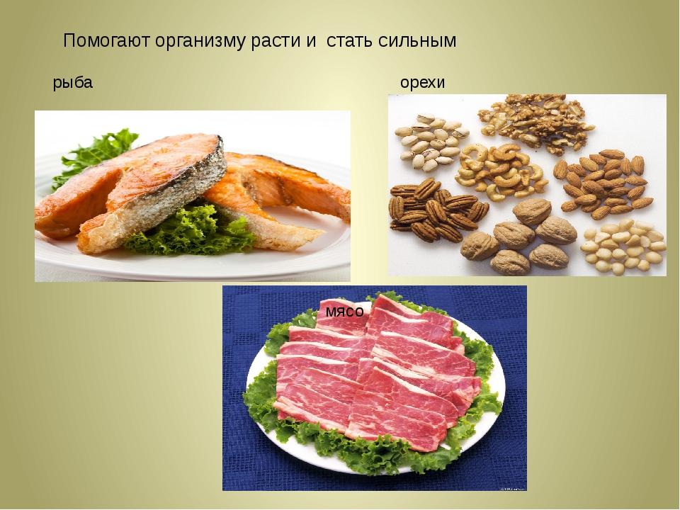Помогают организму расти и стать сильным рыба мясо орехи орехи