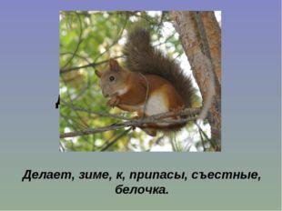 Без крыльев, а быстрее птицы с дерева на дерево перелетает. Делает, зиме, к,