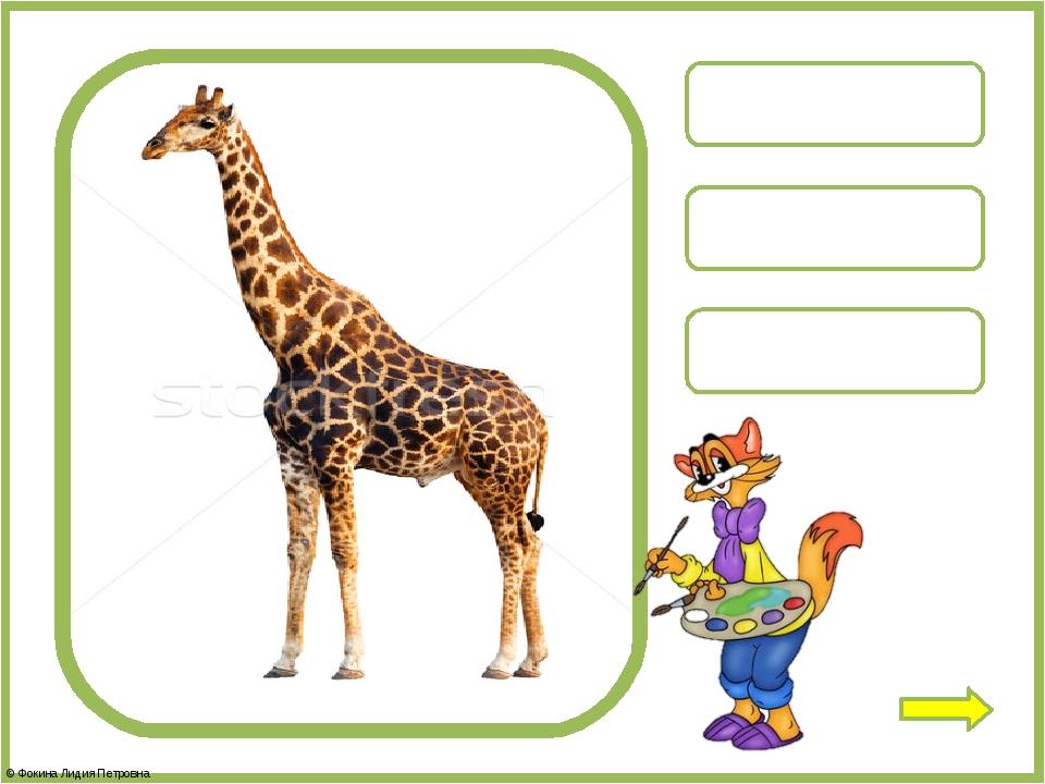 олень жираф медведь © Фокина Лидия Петровна