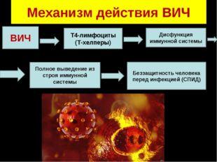 Механизм действия ВИЧ ВИЧ Т4-лимфоциты (Т-хелперы) Дисфункция иммунной систем