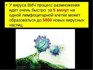 У вируса ВИЧ процесс размножения идет очень быстро: за 5 минут на одной лимфо