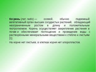Ко́рень(лат.radix)— осевой, обычно подземныйвегетативный органвысшихсо