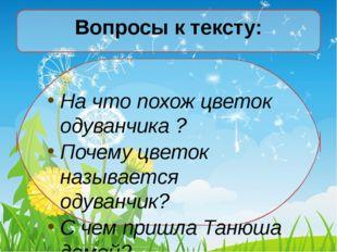 Вопросы к тексту: На что похож цветок одуванчика ? Почему цветок называется о