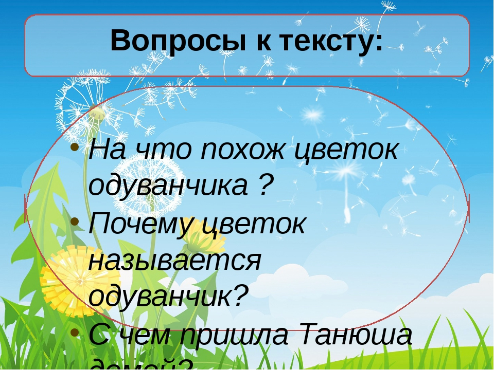 Вопросы к тексту: На что похож цветок одуванчика ? Почему цветок называется о...
