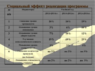 Социальный эффект реализации программы № п/пИндикаторыУчебный год 2013-201