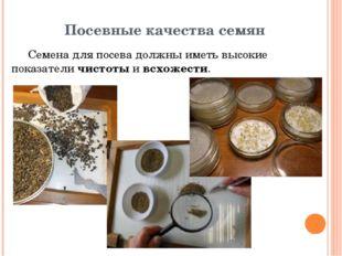 Посевные качества семян Семена для посева должны иметь высокие показатели чис