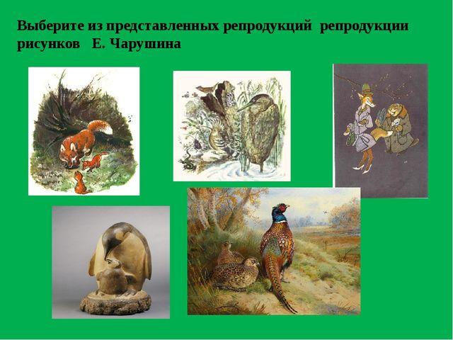 Выберите из представленных репродукций репродукции рисунков Е. Чарушина