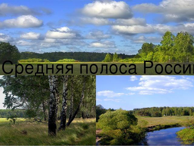 Средняя полоса России