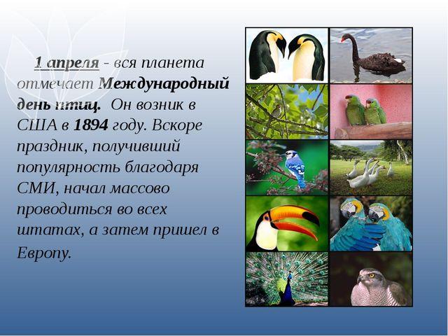 1 апреля - вся планета отмечает Международный день птиц. Он возник в США в 1...