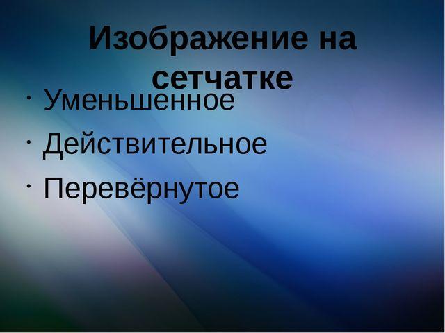 Изображение на сетчатке Уменьшенное Действительное Перевёрнутое