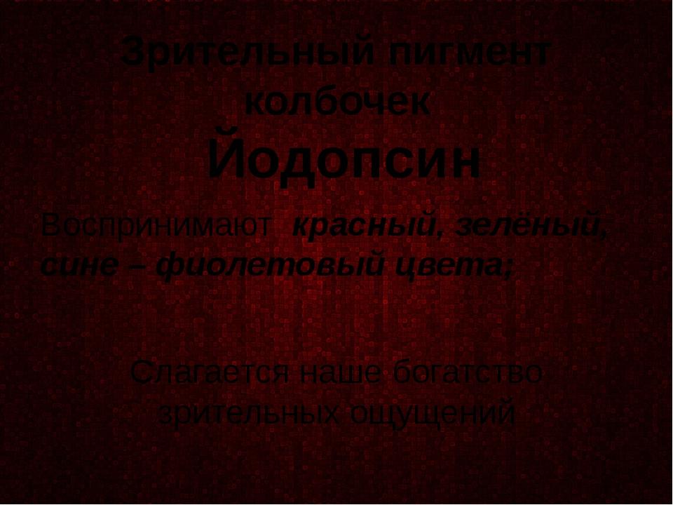 Зрительный пигмент колбочек Йодопсин Воспринимают красный, зелёный, сине – фи...