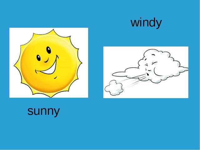 sunny windy