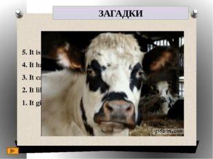 ЗАГАДКИ 5. It is a domestic animal. 4. It has got a long tail. 3. It can be b