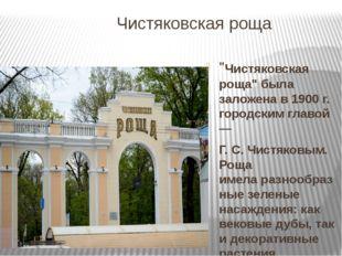 """Чистяковская роща """"Чистяковская роща"""" была заложена в 1900 г. городским главо"""